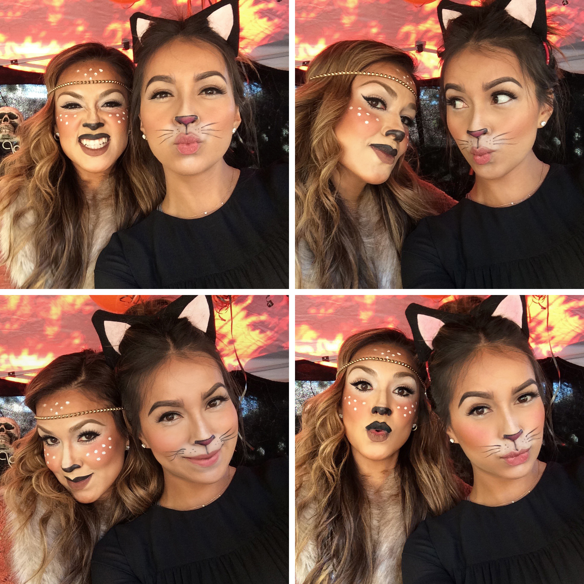 Deer_Cat 4