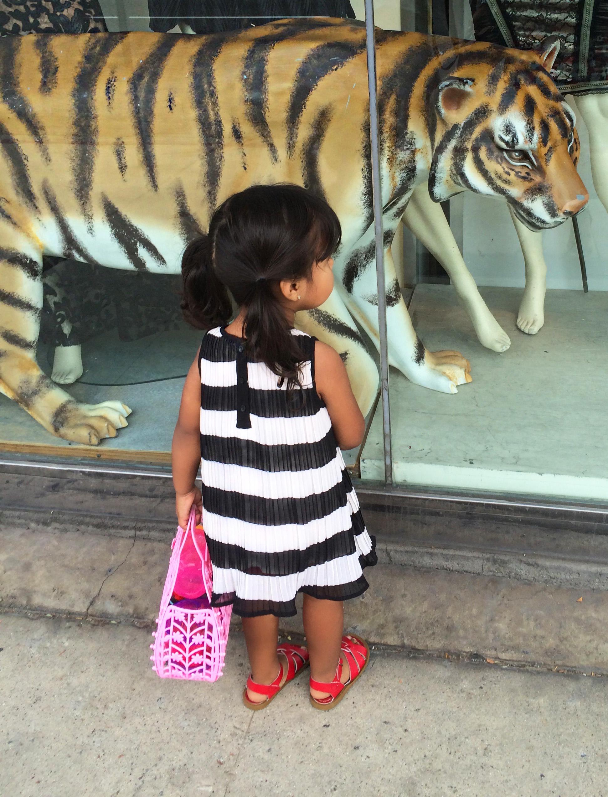 red dress_tiger