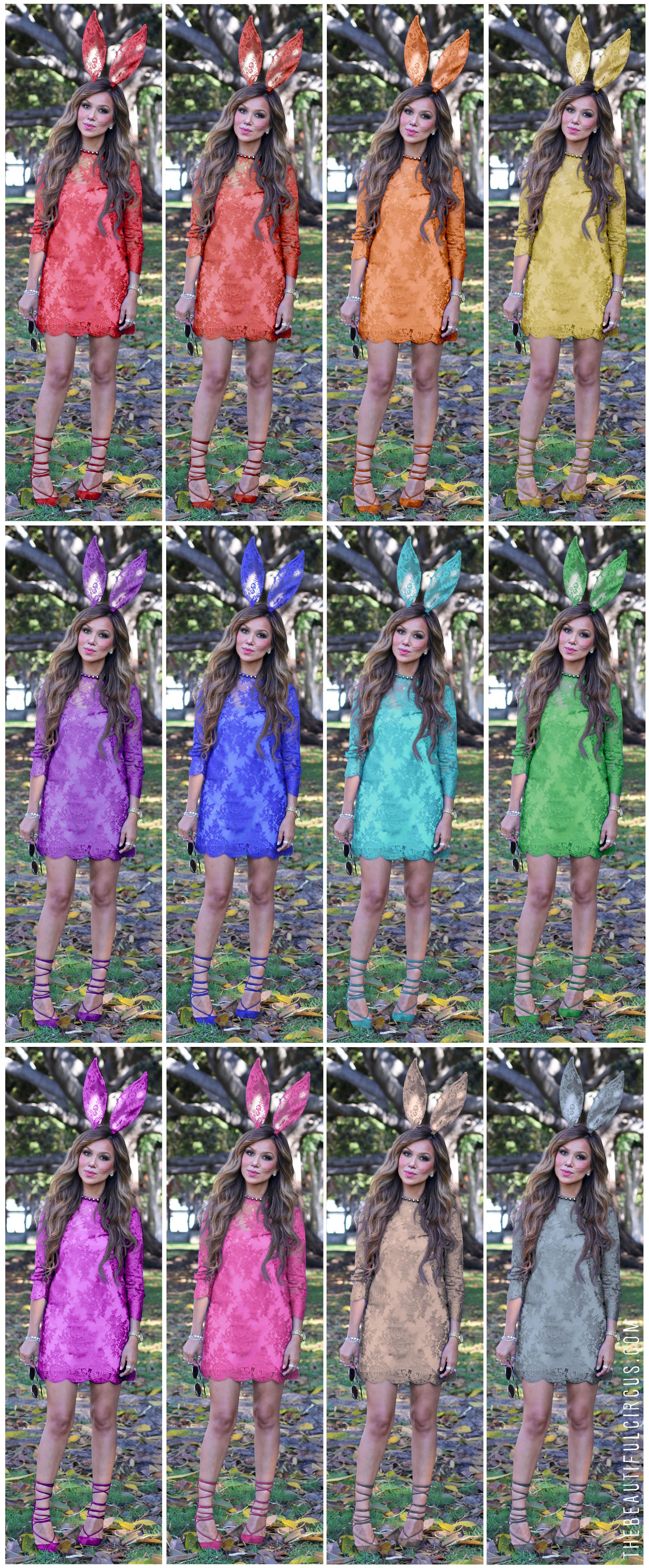 Blue Bunny_ Rainbow