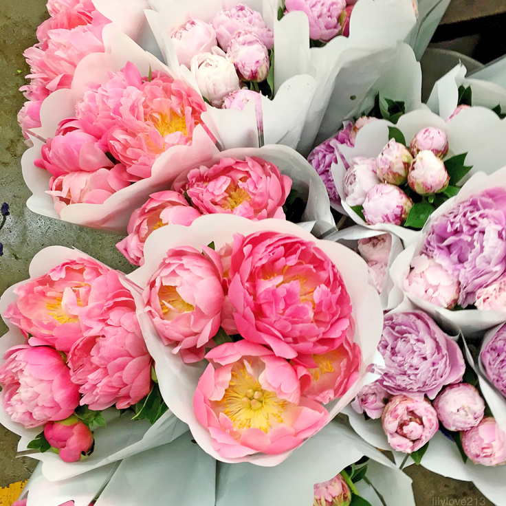 ssbreak_may-flowers