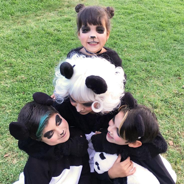 panda-goofing2_736